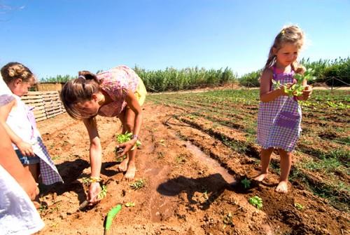 EDEN agribeach, fattoria didattica e molto altro / edensalento.net