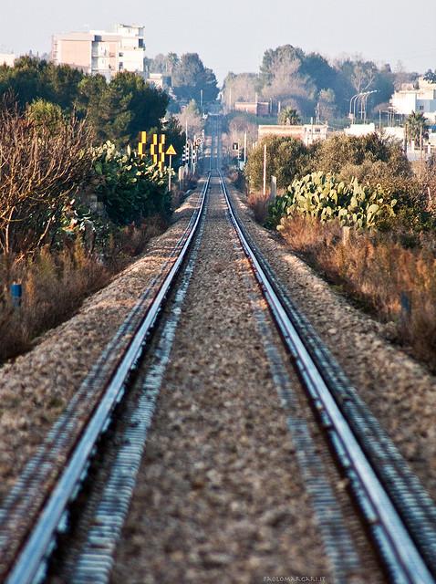 Ferrovie Sud Est / @flickr / Paolo Margari