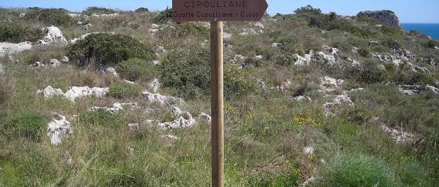 Percorso Sentiero delle Cipolliane / cipolliane.info