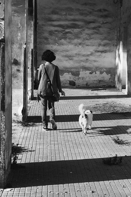 Visitatori a Monteruga / @flickr / Malakhi Helel